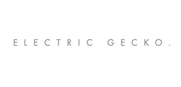 gecko training electric gecko training